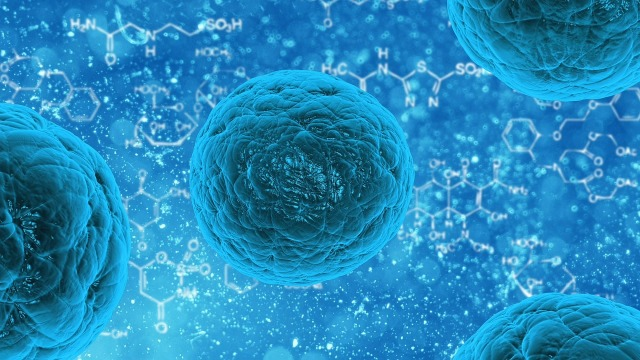 , New Mechanism to help cells to adapt to Low-Nutrient conditions