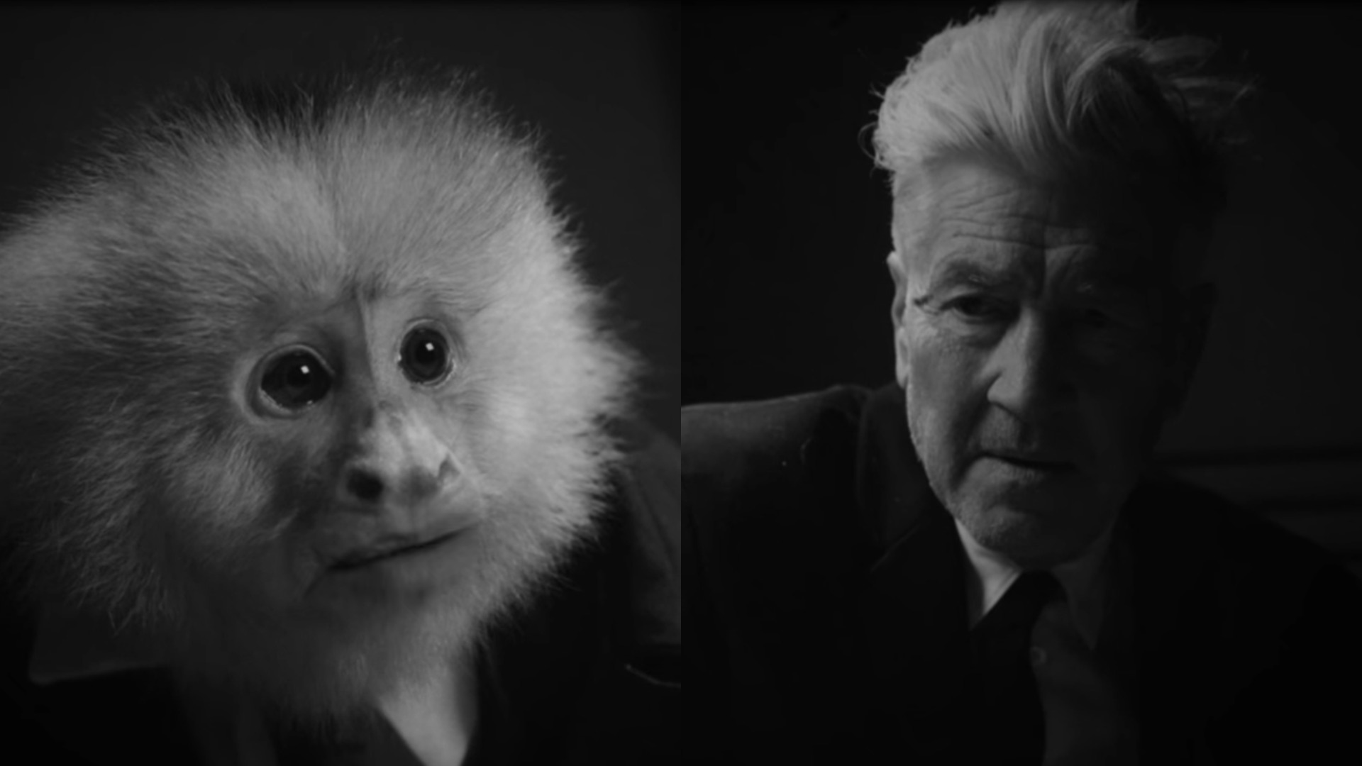 , David Lynch's bizarre new Netflix short called WHAT DID JACK DO is a perfect companion to this quinoa recipe