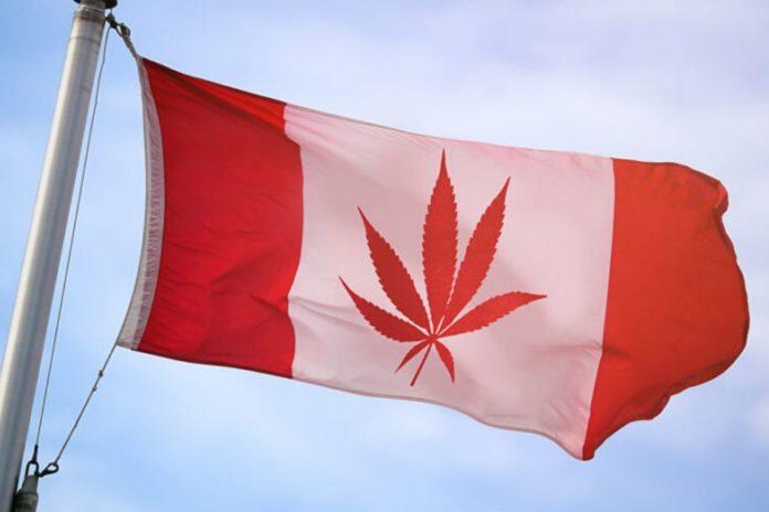 Canada Post-Legalization: Teens Cannabis Use Down 50%